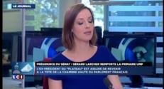 """Le soutien affiché à Sarkozy a """"plombé"""" Raffarin"""