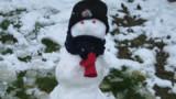 A Tours, le bonhomme de neige retrouvé sain et sauf