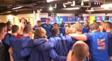 Dans le vestiaire des Bleus, le discours de Dusautoir après la défaite contre l'Irlande