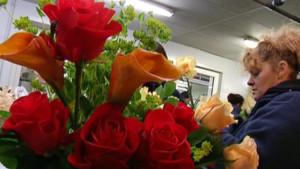 Boutique de fleuriste