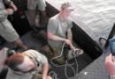 Le prince Harry participant à la capture d'un crocodile en Australie