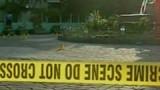 Douze touristes blessés dans un attentat