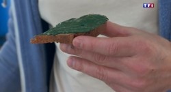 Zoom sur la Côte Bleue : la spiruline, une algue magique