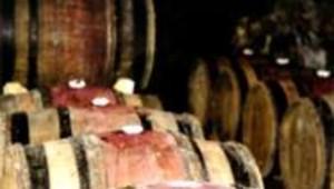vin vins viticulteur cave futs