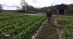 """Réduire de 50% l'usage des pesticides d'ici 2025, une proposition """"louable mais impossible"""""""