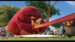 Angry Birds, le film : les oiseaux en colère font leur nid au cinéma