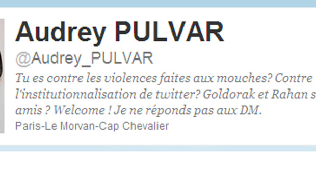 Capture d'écran du compte twitter d'Audrey Pulvar.