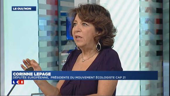 """Lepage : """"La transition écologique du gouvernement n'est pas au rendez-vous"""""""