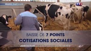 """Baisse des cotisations, """"année blanche sociale"""" : les mesures de Valls pour les agriculteurs"""