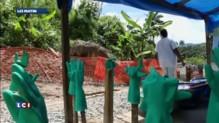 François Hollande arrive en Guinée, très touchée par Ebola