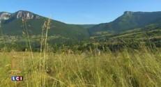 700 espèces de fleurs sont menacées en Rhône-Alpes