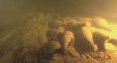 Des bouteilles de champagne ont été retrouvées après 170 ans sous l'eau.