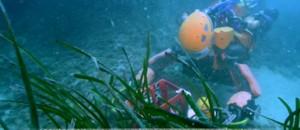 Un robot archéologue pour explorer les profondeurs de la mer
