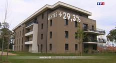 Le 20 heures du 31 août 2015 : Ventes de logements neufs en hausse : comment expliquer l'embellie ? - 1361