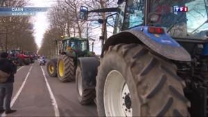 Crise agricole : Intermarché s'engage à acheter le porc au-dessus du cours actuel