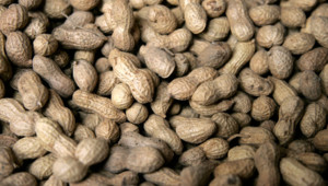 arachide allergie