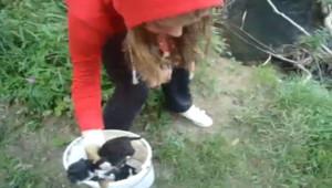 Capture d'écran sur liveleak du film montrant une ado jetant des chiots dans une rivière (31 août 2010)