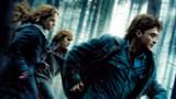 Harry Potter et les reliques de la mort (volet 1)