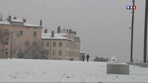 Lyon recouvert d'un beau manteau blanc