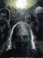 The Walking Dead Saison 1. Série créée par Frank Darabont en 2010. Avec : Andrew Lincoln, Jon Bernthal, Sarah Wayne Callies et Laurie Holden.