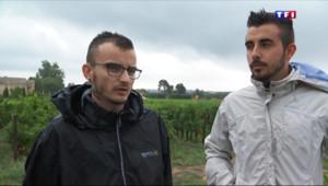 Le 13 heures du 19 septembre 2015 : Hérault : des chasseurs d'orages partagent leurs prévisions sur internet - 573