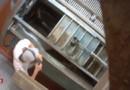 Nouvelles images de maltraitance animale : les précisions de la porte-parole de L214