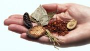 Des plantes médicinales