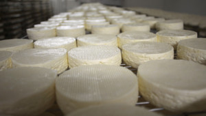 Illustration : Grâce à des petits fromages, une Chilienne de 74 ans détourne plus de 14 millions d'euros