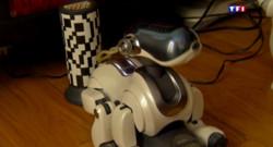 Le 13 heures du 1 août 2015 : Le robot : si loin et si proche à la fois ? - 1147