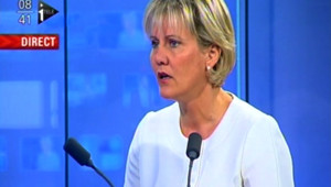 "Ségolène Royal ""pollue le débat"", selon N. Morano"