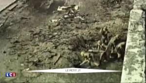 Tchernobyl : retour sur une catastrophe nucléaire