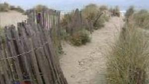 La protection du littoral en panne de moyens