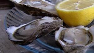 TF1/LCI huîtres huitres coquillage ostréiculture ostréiculteurs Arcachon pêche