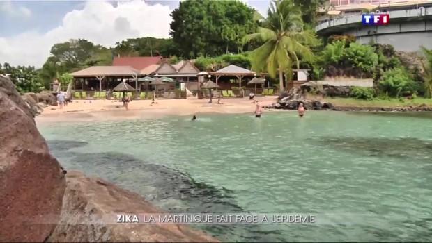 En Martinique, le virus Zika n'inquiète pas la population