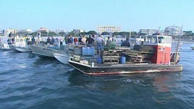 Les barques d'ostréiculteurs dans le bassin d'Arcachon (TF1/LCI)