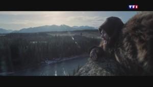 """""""The Revenant"""" : la soif de vivre sublimée par Leonardo DiCaprio"""