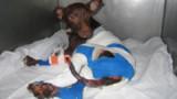Six mois de prison pour avoir mis le feu à Mambo