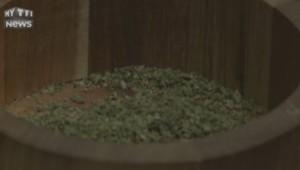 Une box de cannabis est depuis peu vendue aux États-Unis