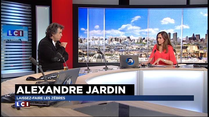 Alexandre jardin laissez faire les z bres vid os for Alexandre jardin 2015