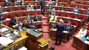 TF1/LCI : Séance au Sénat