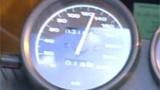 Un manchot arreté pour excès de vitesse