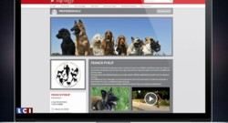 """""""Dogfidelity"""", le premier réseau social de la communauté canine"""