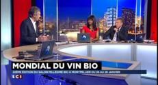 """Vin bio : """"La qualité peut être meilleure"""" que celle d'un vin naturel pour un exploitant viticole"""