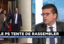 """Luc Carvounas """" Cécile Duflot a un problème avec Manuel Valls"""""""