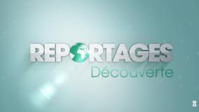 Reportages découverte