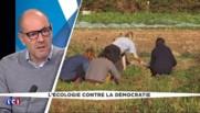 """Notre-Dame-des-Landes : """"C'est un combat emblématique pour les écologistes"""""""