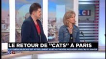 """Le retour de """" Cats """" à Paris : la comédie musicale événement !"""