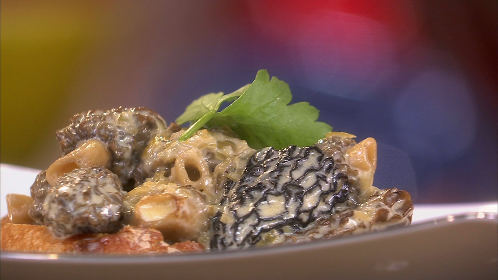 Cro te aux morilles petits plats en equilibre mytf1 - Recette cuisine tf1 petit plat en equilibre ...