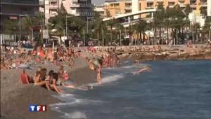 Alerte au requin sur 3 plages de la Côte d'Azur