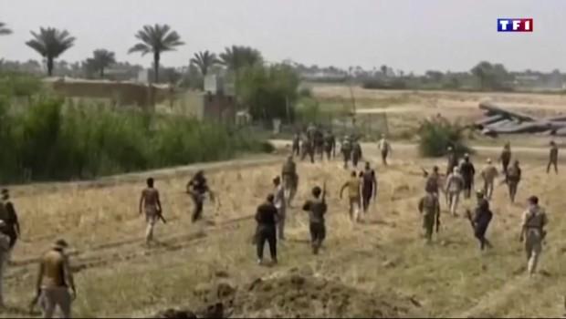 Irak: début de l'offensive pour reprendre Falloujah à Daech